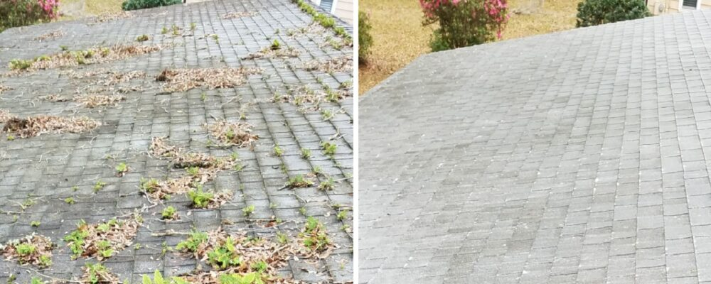 Pressure Washing Roof Cleaning House Washing